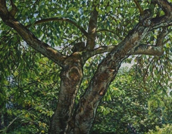 Douglas O Smith: Under the Plum Tree