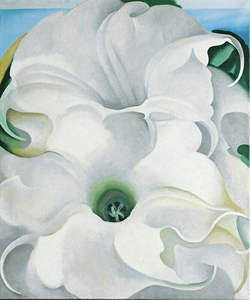 Georgia O'Keeffe: Bella Donna 1939 Oil on canvas