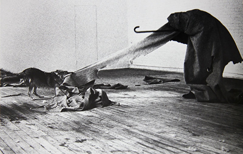 Joseph Beuys: I Like America and America Likes Me, performance, May 1974