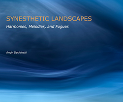 Andy Ilachensky: Synesthetic Landscapes