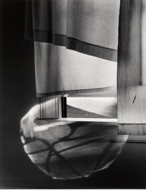 Photograph by Minor White - Windowsill Dreaming, Rochester New York, 1958 http://www.artgallery.nsw.gov.au/