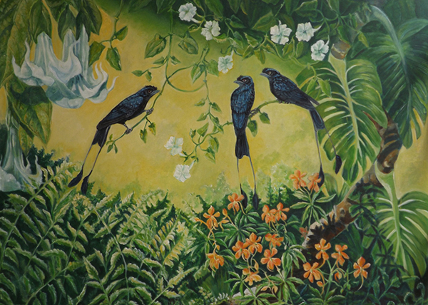 Meena Subramaniam - The Conversation 2, Racket-Tailed Drongos
