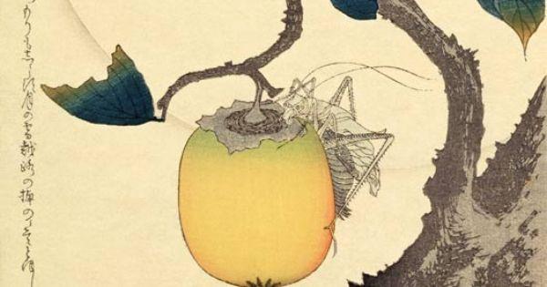 Katsushika Hokusai: Moon, Persimmon and Grasshopper 1807