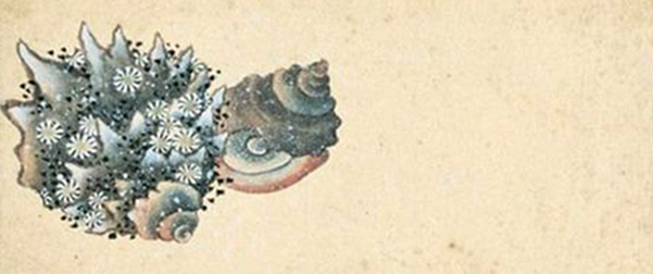 Katsushika Hokusai: Surimono Totsuka, detail