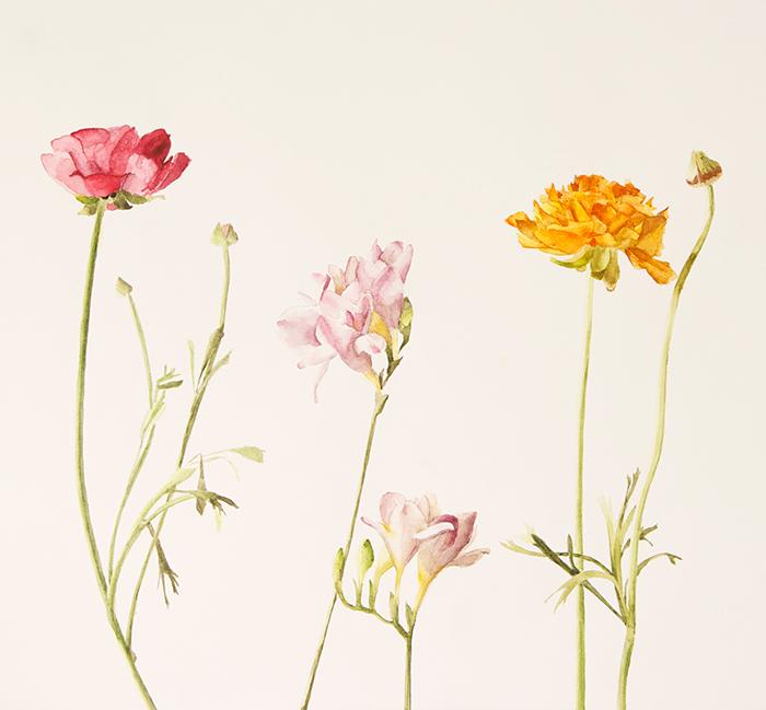 Tania Schmieder, Flowers